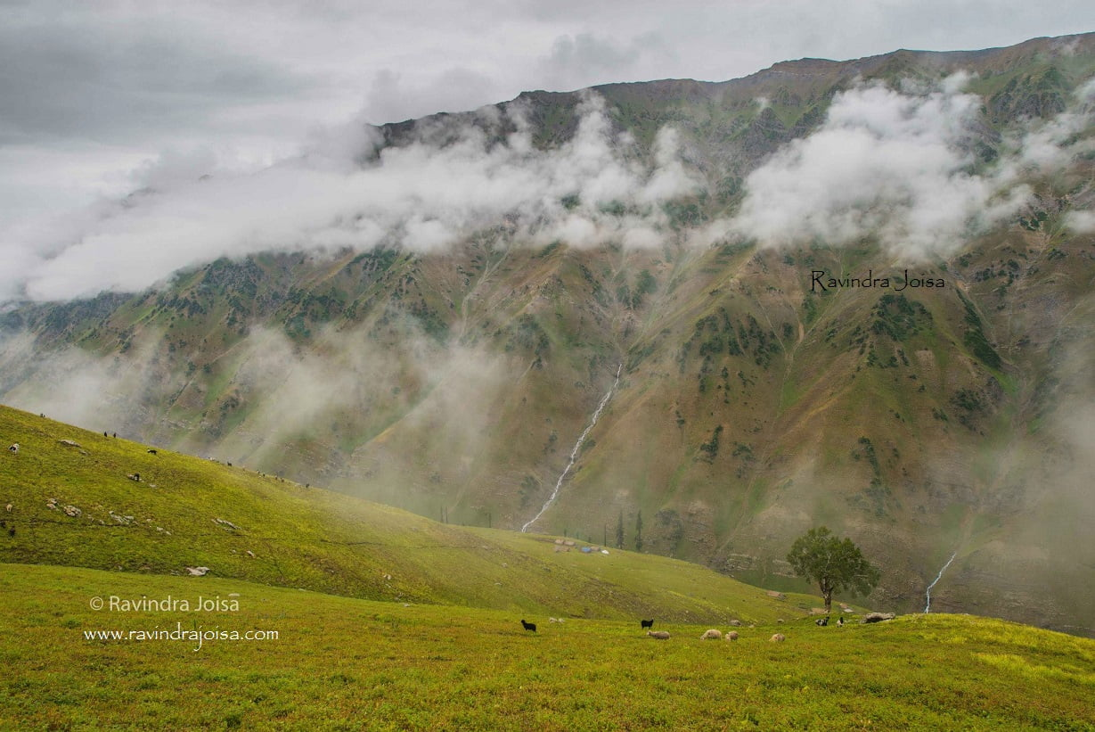 Gasdsar to Satsar Kashmir Great Lakes Trek