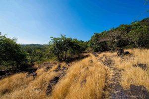 Goa Trek – Kuveshi to Anmod via Castlerock